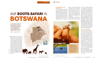 _0012_BotswanaAerztlichesJournal_FEAT